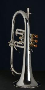 Walton Professional Flügelhorn